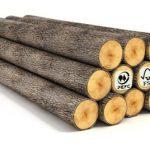 Què és la Certificació Forestal?