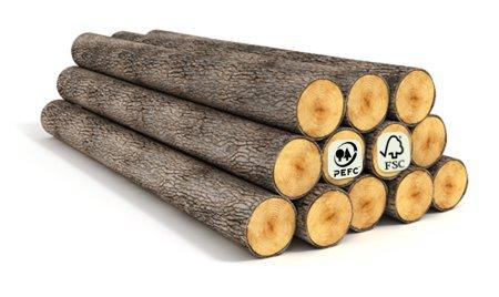 ¿Qué es la Certificación Forestal?