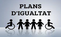 Subvencions: Implantació de Plans d'igualtat 2013