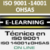 Curso ISO 9001 14001 OHSAS Online
