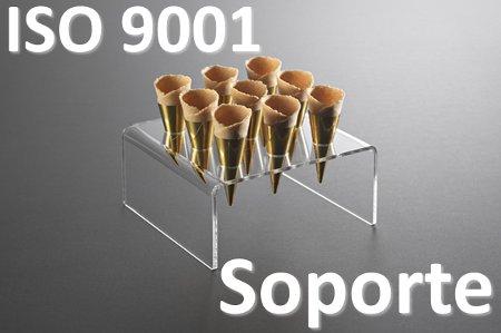 Certificado ISO 9001 Guía práctica (6) Soporte